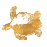 Golden Turtle (gold foil) Posters af Jairo Rodriguez