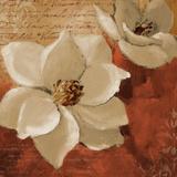 Midday Magnolias I Prints by Lanie Loreth