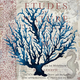 Indigo Coral II Art by Elizabeth Medley