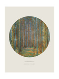 Old Masters, New Circles: Tannenwald (Pine Forest), c.1902 Giclee Print by Gustav Klimt