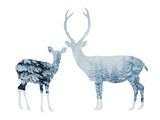 Deer in a Snowy Forest Photographic Print