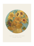 Old Masters, New Circles: Sunflowers, c.1889 Giclee Print by Vincent van Gogh