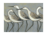 Shore Birds I Metalldrucke von Norman Wyatt Jr.