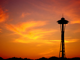 The Space Needle, Seattle, Washington, USA Metal Print by Lawrence Worcester