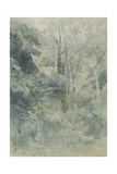 In Rokeby Park, C.1805 Giclee Print by John Sell Cotman