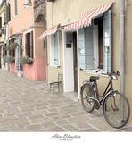 Venetian Bicycle Art by Alan Blaustein