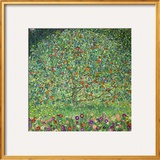 Apple Tree, 1912 Framed Giclee Print by Gustav Klimt