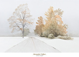 Autumn Snowfall Prints by Alexander Volkov