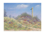 Public Footpath, 2002 Giclee Print by Anthony Rule