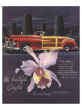 The Beautiful Chrysler-Orchid Print