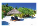 Tropical Beach Chairs Umbrella Posters