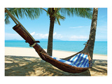 Sand Beach Hammock Palm Trees Poster