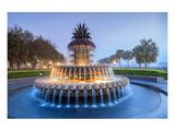 Pineapple Fountain Charleston Kunstdruck