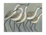Shore Birds II Metalldrucke von Norman Wyatt Jr.