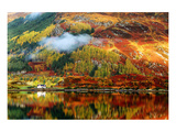 Scottish Highlands Fall Colors Plakater