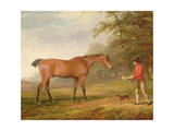 A Bay Horse Approached by a Stable-Lad with Food and a Halter, 1789 Giclee Print by George Garrard