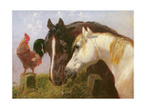 Farmyard Friends Giclee Print by John Frederick Herring Jnr