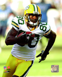 Donald Driver 2008 Action Photo