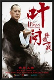 IP Man: The Final Fight Posters