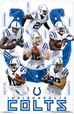 Indianapolis Colts- Team Prints
