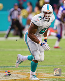 Cameron Wake 2015 Action Photo