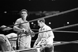 Muhammad Ali and Ernie Terrell Fight 6th February 1967 Photographic Print by Michael Brennan