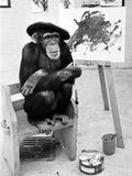 Artist Chimp 1955 Lámina fotográfica por  Williams