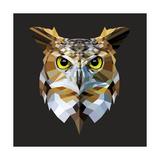 Owl Prints by Lora Kroll