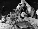 Dog Acts as a Waiter 1965 Photographic Print by  Staff