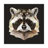 Raccoon Prints by Lora Kroll