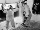Circus Chimps 1954 Lámina fotográfica por Bill Ellman