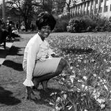 Dionne Warwick, 1965 Fotografisk tryk af Eric Harlow