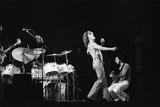The Who Concert 1975 Fotodruck von Tony McGee