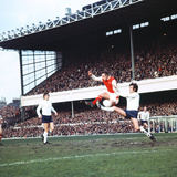 Arsenal 1973 - 1974 Season Photographic Print by  Staff