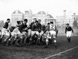 Wales V South Africa Test Match at Cardiff Arms Park 1951 Fotografisk tryk af  Stephens