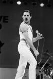Freddie Mercury Fotografisk tryk af Staff
