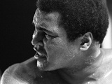 Muhammad Ali Is Fighting His Way Back to Fitness Photographic Print by  Staff