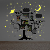 Family Photo Tree with Glow in the Dark Stars Wall Decal