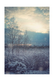 A Winter's Day Premium Giclee Print by Kelly Poynter