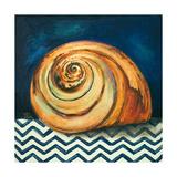 Elegance of the Sea II Premium Giclee Print by Patricia Quintero-Pinto