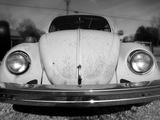 Vintage Bug Photographic Print by Robert Jones
