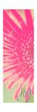 Joy Flower Premium Giclee Print by Susan Bryant