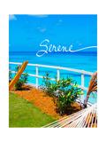 Serene Premium Giclee Print by Susan Bryant