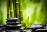 Zen Basalt Stones and Bamboo Fotografie-Druck von  scorpp