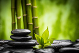 Zen Basalt Stones and Bamboo Photographic Print by  scorpp