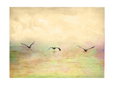 Seagulls in the Sky I Posters by Ynon Mabat
