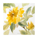 Early May Blooms I Premium Giclee Print by Lanie Loreth