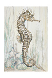 Antique Sea Horse I Prints by Patricia Pinto