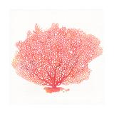 Watercolor Coral II Premium Giclée-tryk af Jario Rodriguez