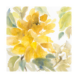 Early May Blooms II Premium Giclee Print by Lanie Loreth